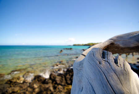 Wooden details of natural decorations at beautiful Puako beach, Big Island