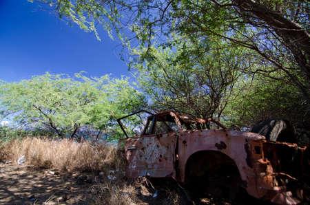 Abandoned red truck in trees near Waialea Beach, Big Island