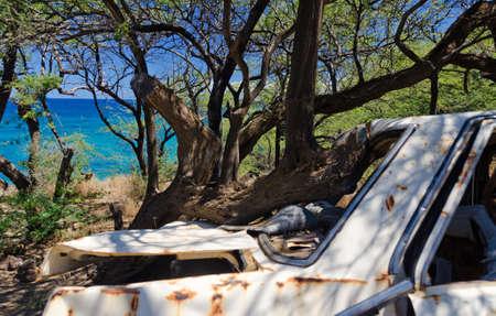Abandoned white sedan in trees near Waialea Beach, Big Island, Hawaii Stock Photo
