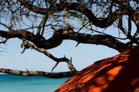 Red umbrella in shadows of Puako beach. Stock Photo