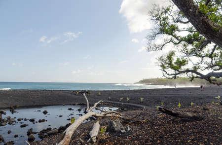 Stale water pond at Pohoiki beach, Big Island, Hawaii