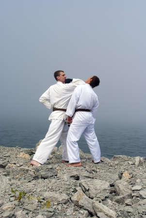 karateka: two karateka fight on the banks of the misty sea