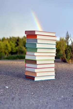 classbook: 12 different books lying on the pavement