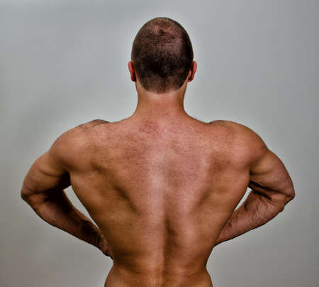 The muscular bodybuilder back. On grey background. Stock Photo - 14265364