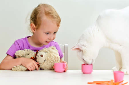 Cute little girl and cat playing with plastic dishes photo