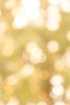 Golden bokeh background Stock Photo - 17249049