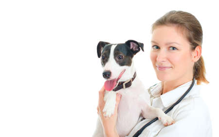 Female veterinarian holding small dog. Isolated on white