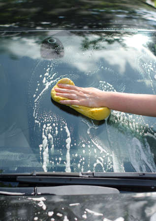 Female hand with yellow sponge washing car photo