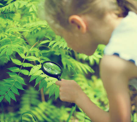 Little girl examining nature through the magnifying glass. Stock Photo