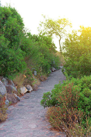 stone path: Stone path in the park at sunset. Stock Photo