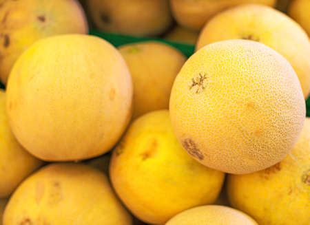 melons: Lots of yellow melons in supermarket.