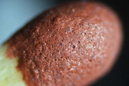 zoom: The Microscopic World. Match head under the microscope. Stock Photo