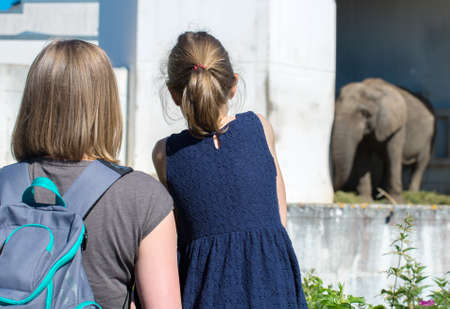 Woman and her daughter visiting zoo. photo