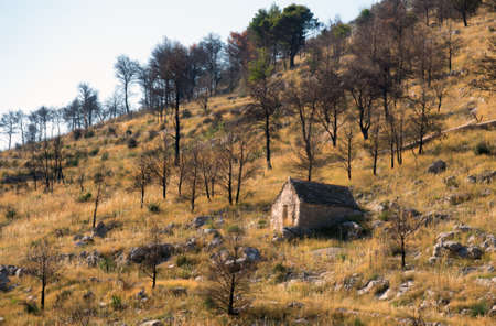 Stone house on a hill among the burned forest.