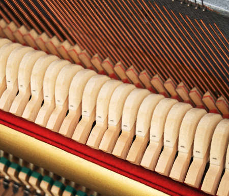 Close-up view of hammers and strings inside the piano.