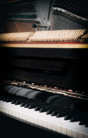 View of hammers and strings inside the piano.