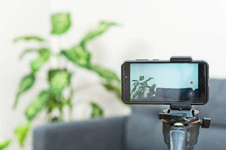 Phone camera on tripod in room. Vlogging concept. Reklamní fotografie