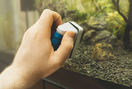 Male hand cleaning aquarium using magnetic cleaner. Stock fotó