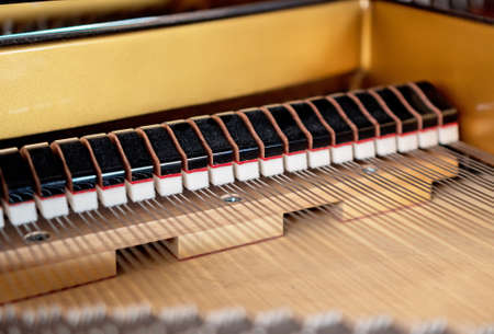 Inside of the Grand Piano. Hammers and strings. 写真素材