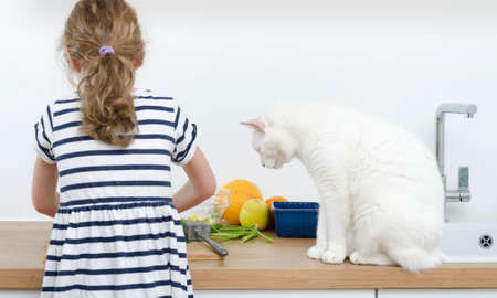 Little girl with white cat making meal in the kitchen.
