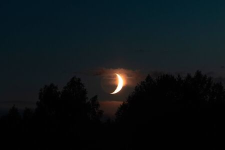 New moon the moon comes over the forest on a summer evening. The moon illuminates the clouds. Banco de Imagens