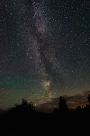 Milky way over the forest summer night Banco de Imagens - 129423588