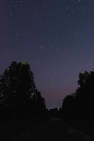 Road in the forest on a summer night and the sky a lot of stars and the constellation URSA major Banco de Imagens
