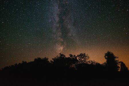 Night sky with milky way over the forest summer night