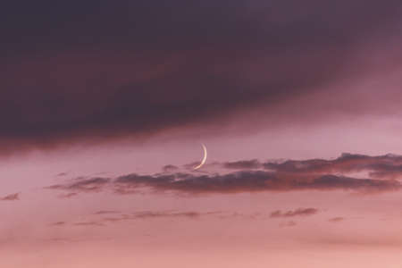 New moon moon among pink clouds at sunset.
