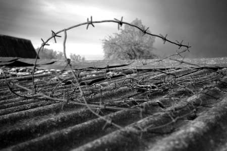 suppression: Barbed wire - the cruel instrument of restriction and suppression constructed by the person Stock Photo