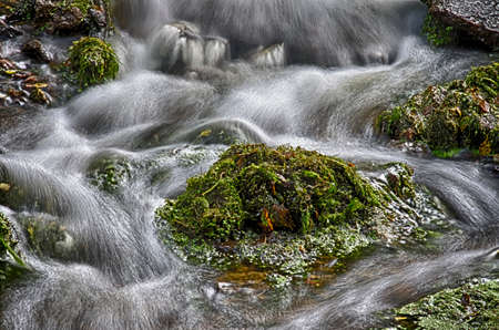 raged: Autumn stream.The raged stream at a foot of small falls in Pavlovsk Park.