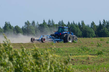 Blue tractor plowing the green field with an iron harrow in the plowing season with the bush foreground