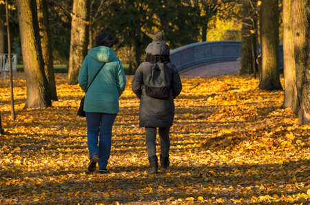 Indian summer two unidentified women walk through a yellow park view of their backs in the shade Foto de archivo