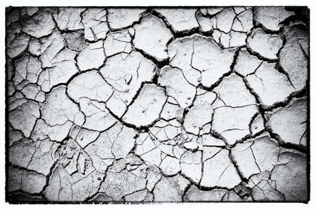 The dried up cracked earth