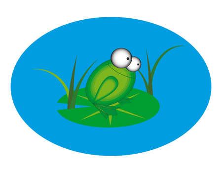 Animation frog Illustration