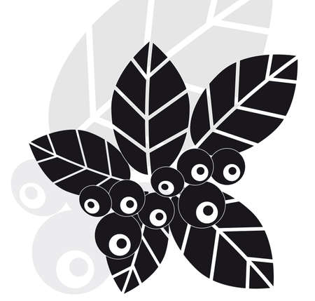 bilberry: Leaves and bilberry berries Illustration