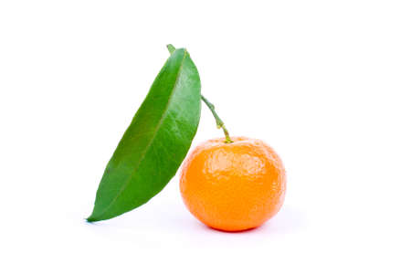 Fresh tangerine Stock Photo