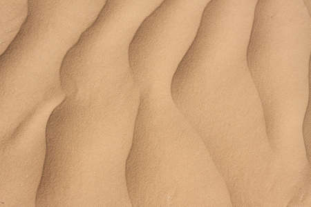 Wavy desert sand texture closeup