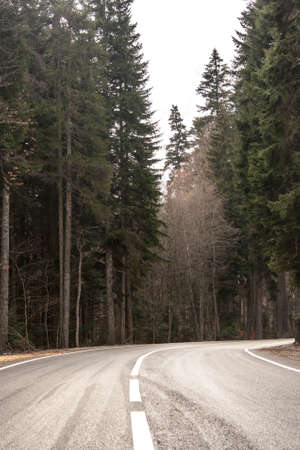 twisty: Highway passing through the autumn forest in psamurnuyu weather Stock Photo