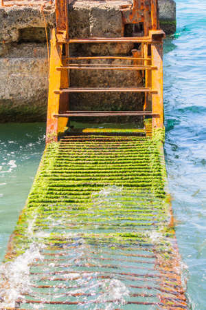 A rusty ladder covered with algae in the sea
