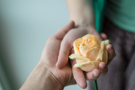 Male hand holding the female hand that holding the rose flower. Relations concept.
