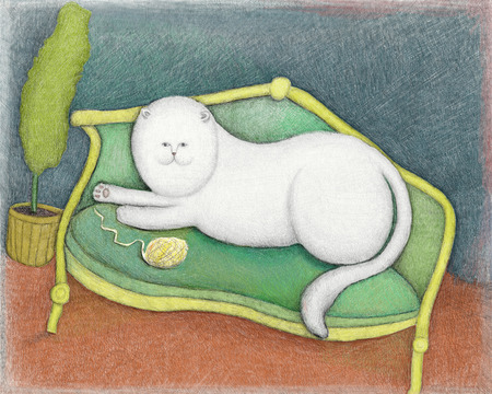 Image of a white cat, which lies on the couch