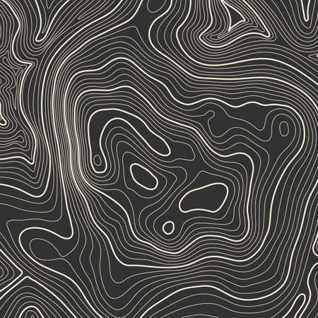 Topographic map background concept with space for your copy. Topography lines art contour , mountain hiking trail , Shape design. Computer generated . Ilustração