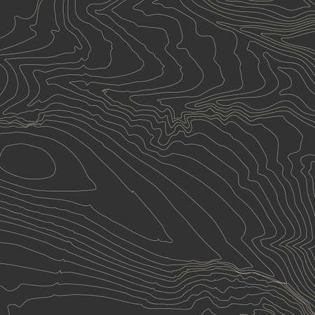 topographic: Topographic map background concept with space for your copy. Topography lines art contour , mountain hiking trail , Shape design. Computer generated . Illustration