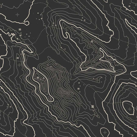 Topographic map background concept with space for your copy. Topography lines art contour , mountain hiking trail , Shape design. Computer generated . 向量圖像