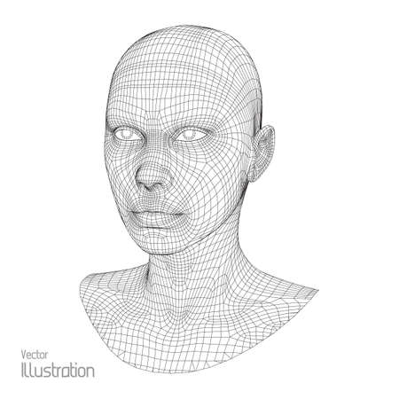 the human face: Head of the Person from a 3d Grid. Human Head Wire Model. Human Polygon Head. Face Scanning. View of Human Head. 3D Geometric Face Design. 3d Polygonal Skin.