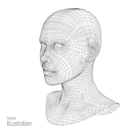 physiognomy: Head of the Person from a 3d Grid. Human Head Wire Model. Human Polygon Head. Face Scanning. View of Human Head. 3D Geometric Face Design. 3d Polygonal Skin.