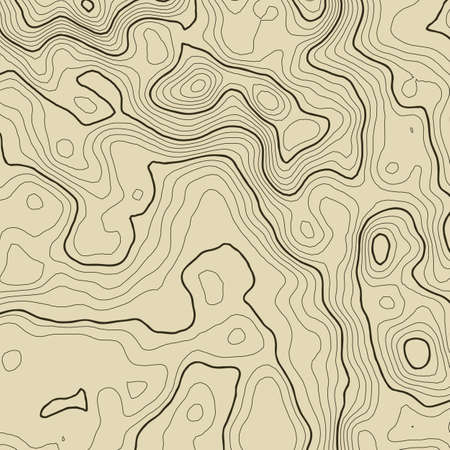 topography: Topographic map background concept with space for your copy. Topography lines art contour , mountain hiking trail , Shape  design.