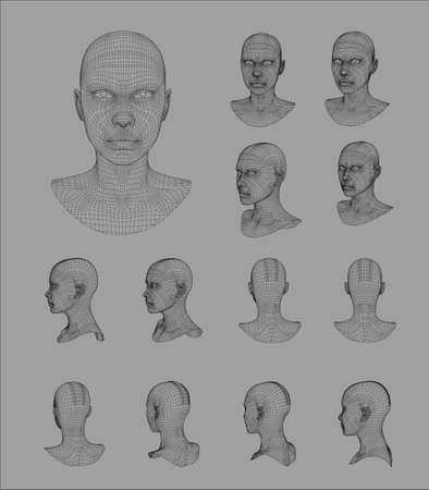 countenance: Wireframe head 3d model vector illustration 3d