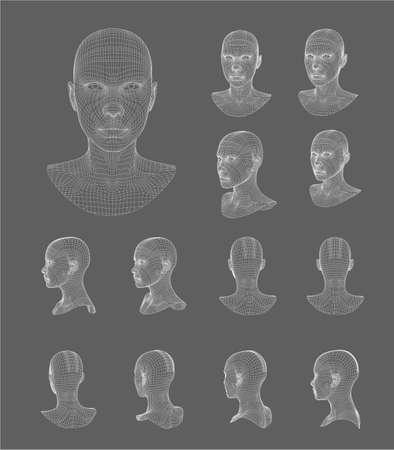 bust: Wireframe head 3d model  on black vector illustration design
